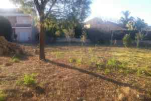 Rural property in Sale, zona Alta